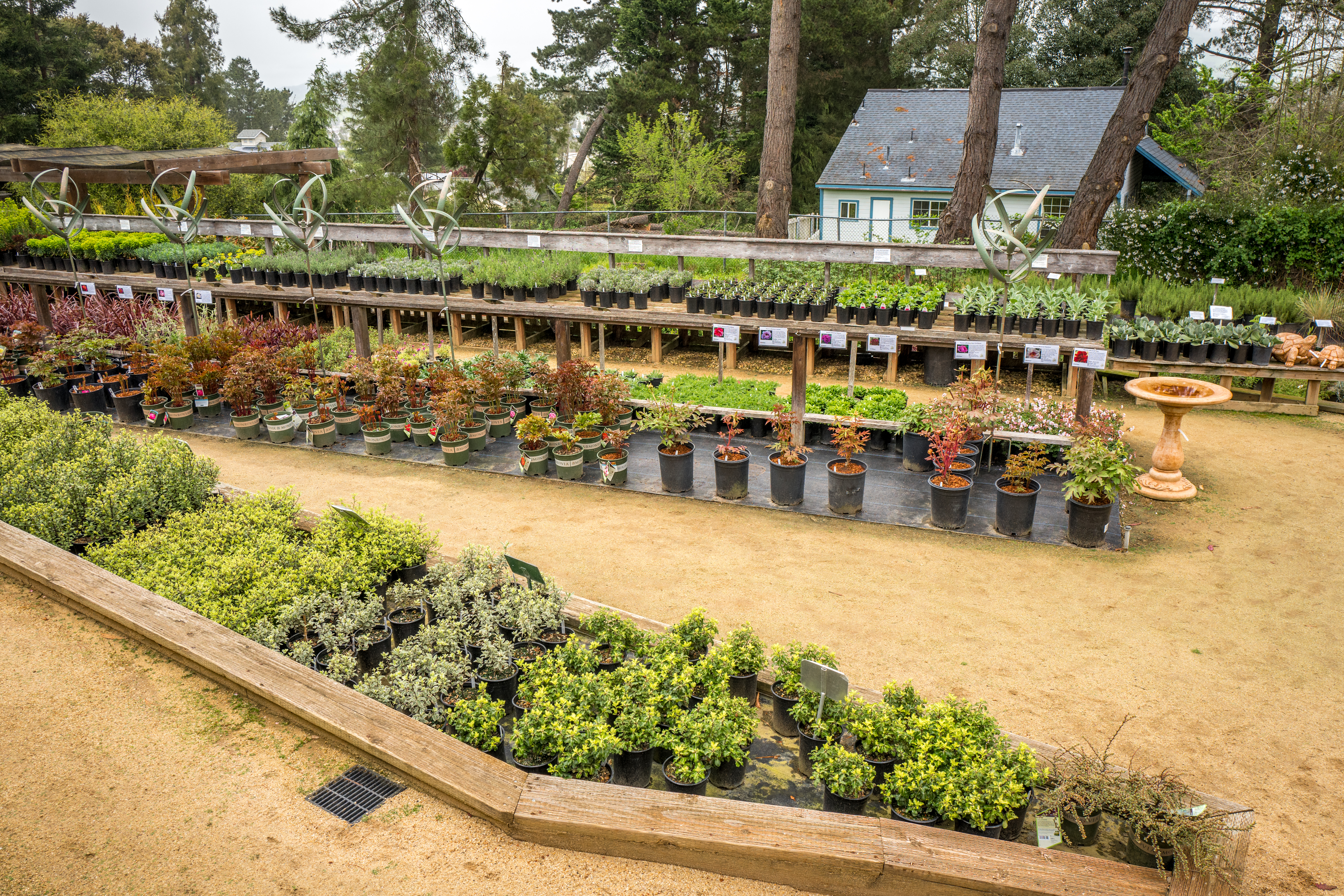 It Was Beginning To Rain As I Arrived But Didn T Deter Me From Racing Around Every Inch Of This Incredible Nursery My First Stop The Vegetable Starts